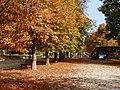 Nel parco del Borgo in autunno.jpg