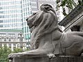 New York Public Library Lion-27527.jpg