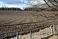 Newly Ploughed Field - geograph.org.uk - 726914.jpg