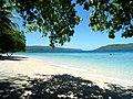 Nice beach - panoramio.jpg