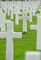 Normandy American Cemetery and Memorial (6032209151).jpg