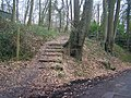 North Downs Way goes into Trosley Country Park - geograph.org.uk - 1177110.jpg