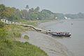 Northern Jetty - River Ichamati - Taki - North 24 Parganas 2015-01-13 4302.JPG