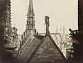 Notre Dame, Paris, France. View from spire of roofs, statuary, and gable.jpg