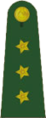 OF-2 Yüzbaşı.png