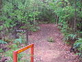 OIC pemberton bibbulmun track sign to cascades.jpg