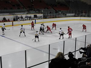 Ontario University Athletics - 2012 men's hockey playoffs, Windsor Lancers vs. York Lions at Windsor Arena (February 16, 2012).