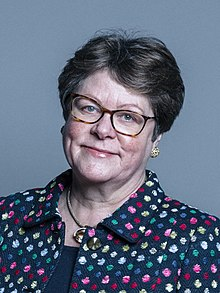 Official portrait of Baroness Brown of Cambridge crop 2.jpg