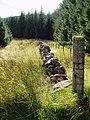 Old boundary dyke near Lamloch - geograph.org.uk - 541568.jpg