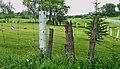 Old fence of Noyas Knapp Cemetery - panoramio.jpg