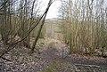 Open gate, Millbank Wood - geograph.org.uk - 1256003.jpg