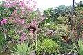Orchid Gardens Bali, Indonesia - panoramio (1).jpg