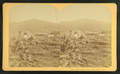 Owl's Head Slide, Jefferson, N.H, from Robert N. Dennis collection of stereoscopic views 4.png