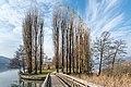 Pörtschach Promenadenbad Brücke zur Blumeninsel 01122018 5505.jpg