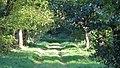 Parc Dendrologic - Arcalia (1424923856).jpg