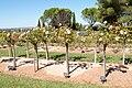 Parc Memorial de Provence 20100911 2.jpg
