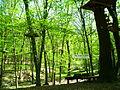 Park linowy, Racibórz.JPG