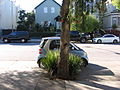 Parking in the Mission 2989.JPG