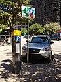 ParkingmeterAustinTX.JPG