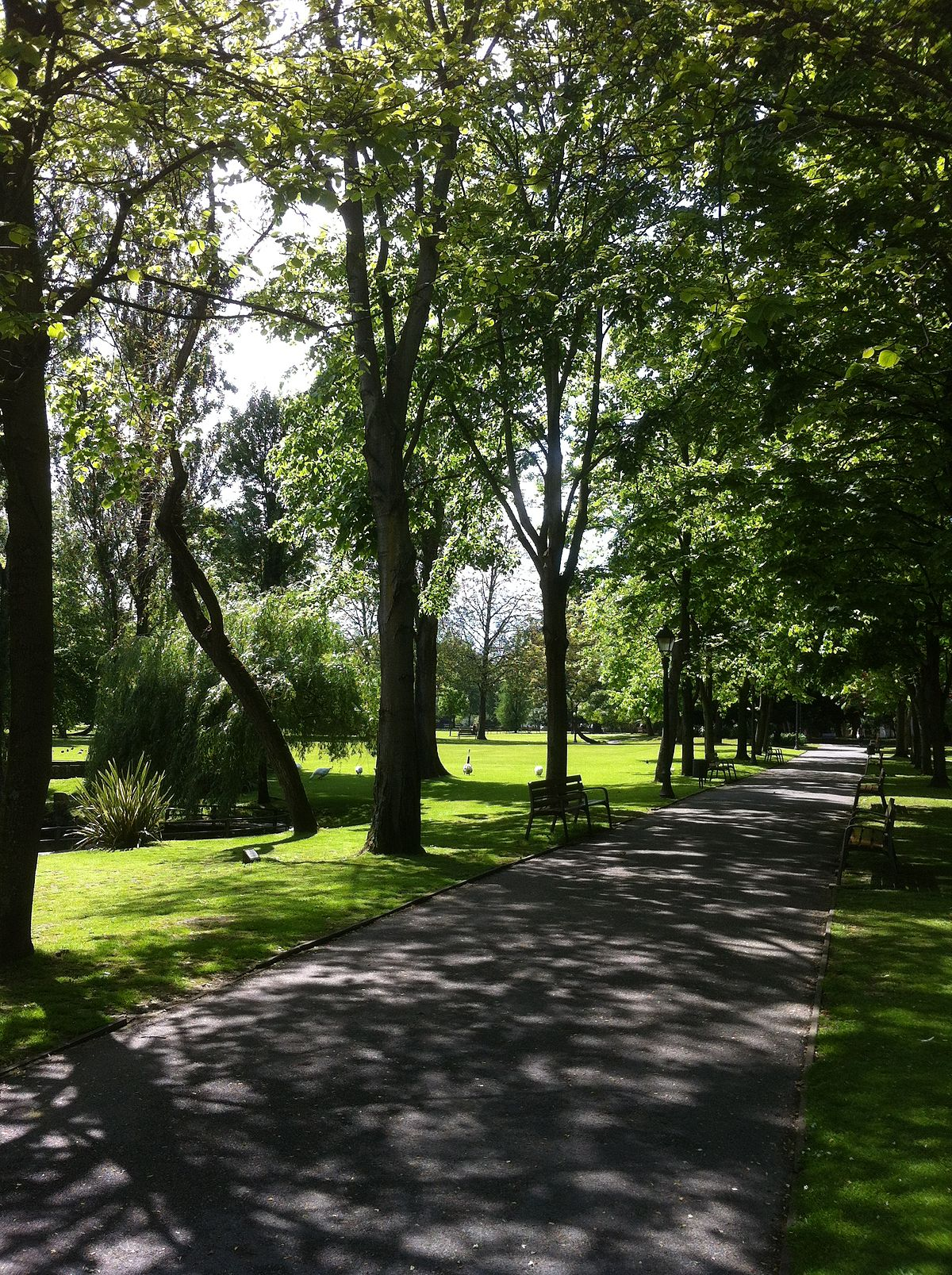 Parque de Ferrera Wikipedia, la enciclopedia libre