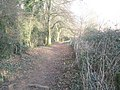 Path from Catherington Down to Parsonage Field - geograph.org.uk - 1098255.jpg
