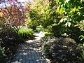 Pathway and walkway at the Frelinghuysen Arboretum.jpg