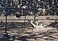 Paul Dujardin en 1925.jpg
