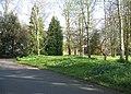 Paved driveway - geograph.org.uk - 784083.jpg