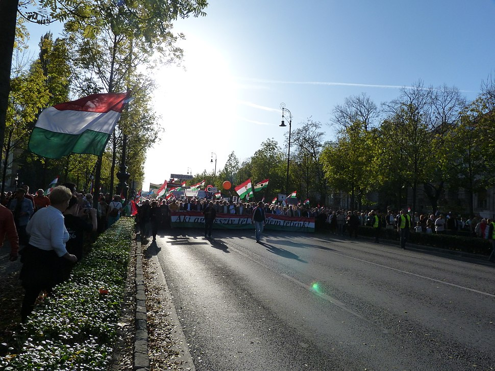 Peace March for Hungary - 2013.10.23 (43)