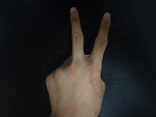 Peace sign. Photo by Moyashi-otaku. Creative Commons Attribution 4.0 International license.