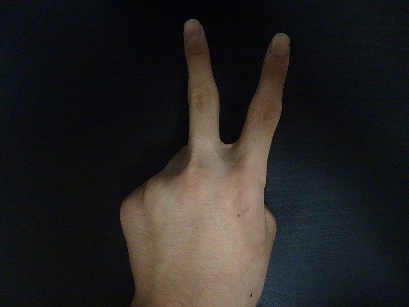 File:Peace sign photo.jpg