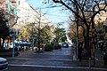 Peatonal - panoramio (3).jpg
