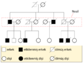 Pedigree-chart-example-Turkish.png