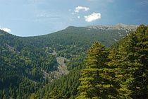 Pelister Mountain.JPG
