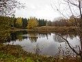 Permskiy r-n, Permskiy kray, Russia - panoramio (742).jpg