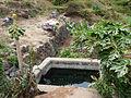Pico da Antonia-Point d'eau (2).jpg