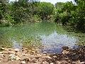 PikiWiki Israel 12746 ein shokek spring.jpg