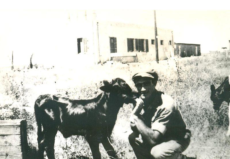 יוסף אברמסקי