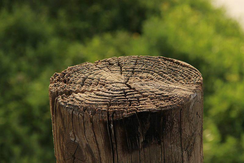 שעון שמש מעץ