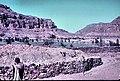 PikiWiki Israel 75803 oasis.jpg