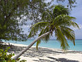 Playa de Gran Caimán-Islas Caimán03.JPG