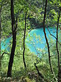 Plitvice Lakes National Park 38.JPG