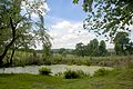 Pond at Hare Hill, Cheshire.jpg