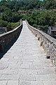 Ponte della Maddalena side view.JPG