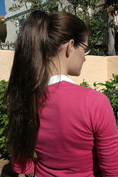 Brunette Woman with a ponytail