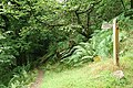 Porlock, footpath to South Terrace - geograph.org.uk - 221398.jpg