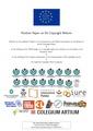 Position Paper on EU Copyright Reform.pdf