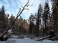 Prielom v zime - panoramio (2).jpg