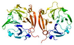 PDB rendering based on 1itv.