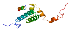 Protein TOMM20 PDB 1om2.png